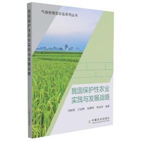 我国保护性农业实践与发展战略/气候智慧型农业系列丛书