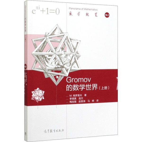 Gromov 的数学世界(上册)