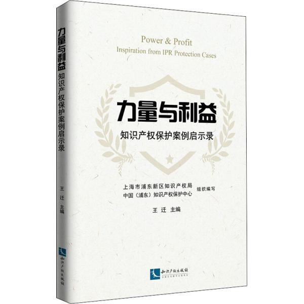 力量与利益:知识产权保护案例启示录