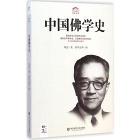 中国佛学史 宗教 胡适 著 新华正版