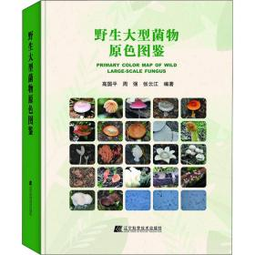野生大型菌物原色图鉴