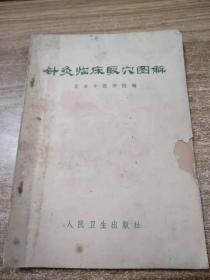 针灸临床取穴图解(修订本)