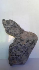 中国名石--陈炉奇石(观赏石、观形石、图案石;总之:看着像什么,友自己定吧)