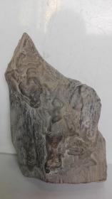 中国名石;陈炉奇石--西游记人物故事--牛魔王(观赏石、观形石、图案石)