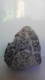 中国名石-陈炉奇石中国名石-陈炉奇石(人物故事。观赏石、图案石;总之:看着像什么,友自己定吧)