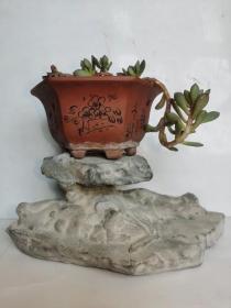 中国名石--陈炉奇石(奇石名:顶天立地。图案石、旺财石、观赏石、招财镇宅、风水原石摆件,高端大气;总之:看着像什么,友自己定吧!)