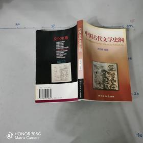 中国古代文学史纲;'