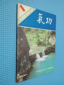气功 1984 1
