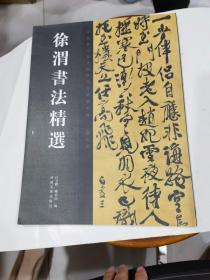 中國歷代書法名家作品精選系列:徐渭書法精選   2007年1印