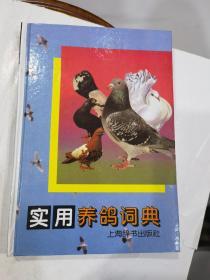 实用养鸽词典 精装