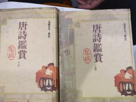 唐詩鑒賞集成(上下全)