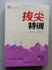 拔尖特训英语九年级下 译林版