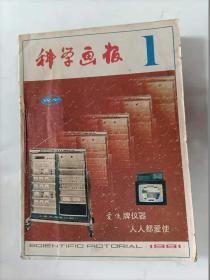 科学画报    1981年全12期合订本