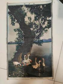 丝织画群鹅图