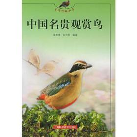 中国名贵赏鸟——生活情趣丛书