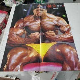 健美先生海报【5张 合售】
