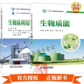 2册 生物质利用原理与技术+生物质能 中国电力出版社 生物质制备化学品生物质基功能新材料先进生物质制氢技术可再生合成燃料教材