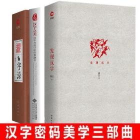 正版 全3册 发现汉字+图说字源+汉字之美设计创意唐汉/著