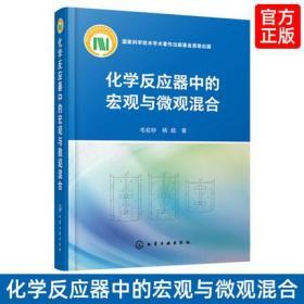 化学反应器中的宏观与微观混合 化学反应器中混合微观混合基本理念宏观混合实验研究化学反应工程混合设备设计优化基础理念应用书