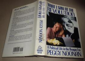 What I Saw at the Revolution: A Political Life in the Reagan Era-我在革命中看到的:里根时代的政治生活:B4架顶