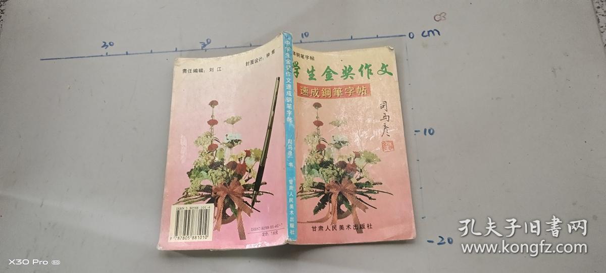 中学生金奖作文 速成钢笔字帖