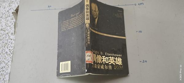 偶像和英雄:艾森豪威尔传——美国总统书系