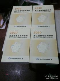 2020浙江调查与监测报告