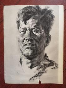 70年代美术插页(单张)素描《男人像》