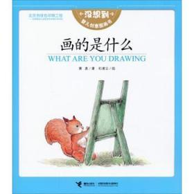 没想到婴儿创意图画书:画的是什么