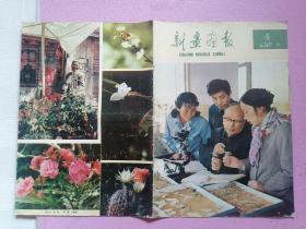 新疆画报1982年8期(4)