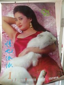 1993年  情也依依 美女挂历  全12张