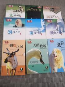 儿童文学金牌作家书系(9册合售)