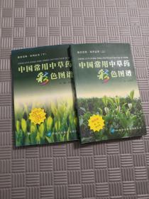 中国常用中草药彩色图谱 医药宝典 系列丛书 (上、下) 缺中册 共2