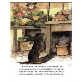 我的动物朋友:集市上的流浪狗