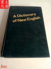 A Dictionary of New English(英语新词词典)