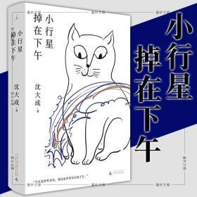 北京贝贝特书 小行星掉在下午 宝珀理想国文学奖决选作者沈大
