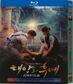 太阳的后裔(导演: 李应福)