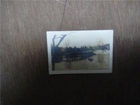 老照片    青岛中山公园小西湖