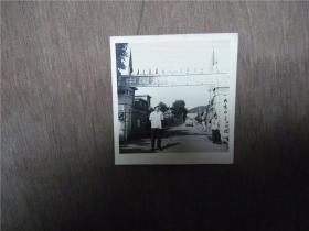 老照片    大连水产学院门前   1981年
