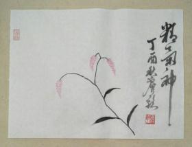 宣纸手绘红蓼草文人画【实拍图片】未装裱