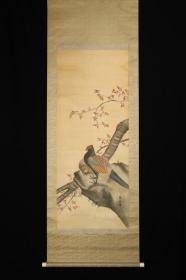回流字画 回流书画《锦鸡》花鸟 老字画 落款:美山 日本回流字画 日本回流书画