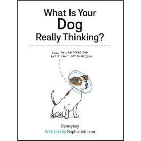 【全新正版现货】你的狗在想什么?英文原版 绘本 What Is Your Dog Really Thinking Sophie Johnson 精装