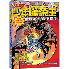少年探案王(最强大脑版)·维也纳的暗夜猎手(德国最受欢迎的儿童冒险科普小说)