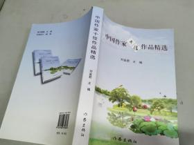 中国作家十佳作品精选