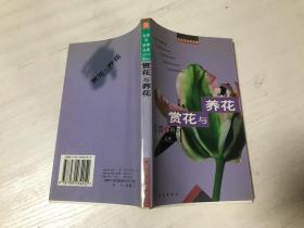 赏花与养花