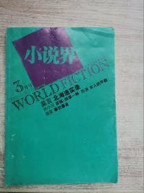 小说界2005.2