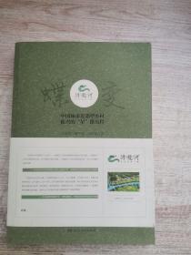 蝶变 浔龙河 中国城市近郊型乡村振兴的星路历