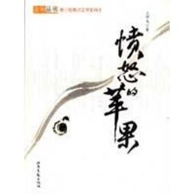 愤怒的苹果/麦地丛书 中国现当代文学 王祥夫 新华正版