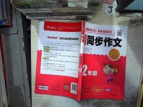 开心作文 小学生同步作文 2年级 /开心作文研究中心 湖南教育出版社