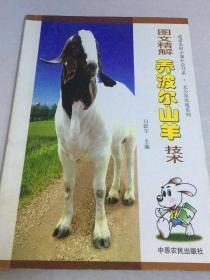 图文精解养波尔山羊技术